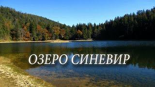 Озеро СИНЕВИР в горах Карпаты