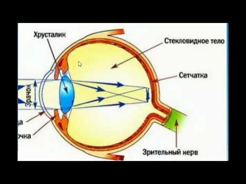 Можно ли умываться после лазерной коррекции зрения