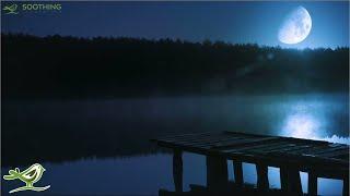 Relaxing Sleep Music 24/7: Sweet Dreams, Fall Asleep, Deep Sleeping Music, Beat Insomnia