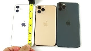 Which Size iPhone 11 Should You Buy?