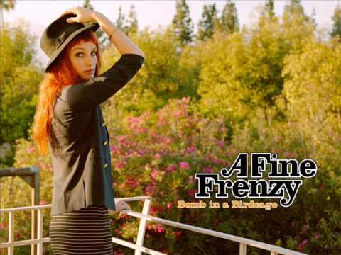 What I Wouldn't Do (Song) by A Fine Frenzy