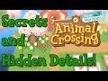 Animal Crossing: New Horizons - Secrets And Hidden Details! (Analysis)