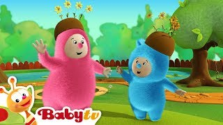 Billy Bam Bam recogen naranjas | BabyTV (Español)