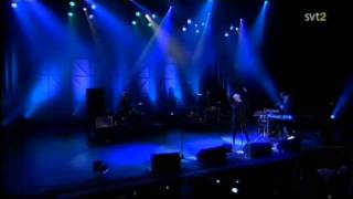 Robyn - Cobrastyle ( Live Los Angeles 2008 )