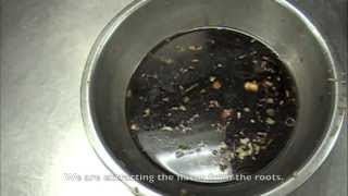 How to Make Chinese Brown Sauce  Base Sauce  Mother Sauce.