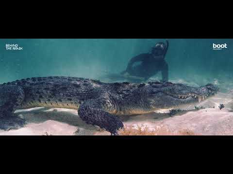 Tanz mit dem Krokodil