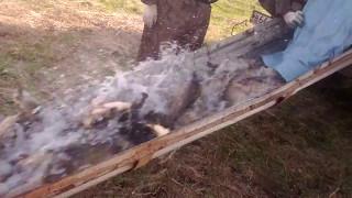 Рыбалка в сухой липовице тамбовская область
