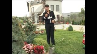 Ghita Munteanu - Hai cu toti sa bem un vin