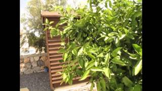 preview picture of video 'Property North Cyprus, bungalow in Lapta- £87950. Кипр недвижимость.'