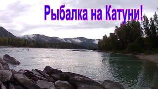 Рыбалка на реке катунь осенью