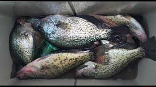 Summer Crappie Fishing July 2016. How To Catch Those Big Crappie In The Heat.