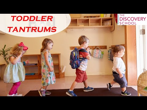 Toddler Tantrums   Why they happen? And how to help?