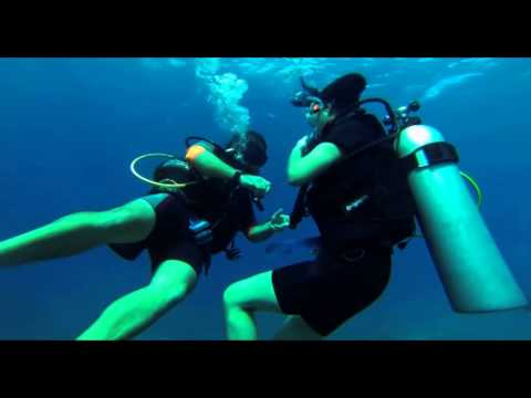 "Discover Scuba Dive at ""The Aquarium"", Catalina Island"