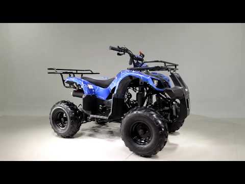 2019 Taotao USA ATA125D in Dearborn Heights, Michigan - Video 1