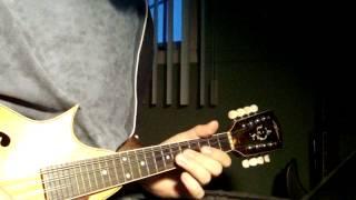 Bathory - Foreverdark Woods (mandolin cover)