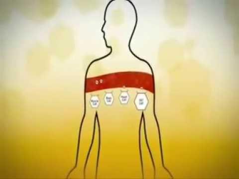 วิธีการเอาพยาธิออกจากร่างกาย