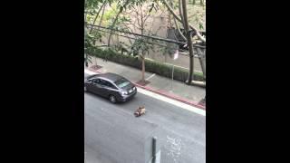 San Francisco Uber / Lyft driver's road rage