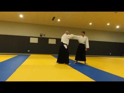 Aikido G Beets BF part2