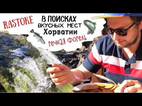 """Рестораны Хорватии 🇭🇷 Таверна  """"Под крышей Растоки"""" 🐠 Konoba """"Pod Rastočkim krovom"""""""