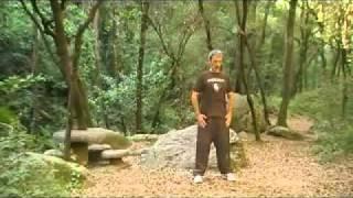 Qigong Para Regular El Hígado (irritación, Cólera, Frustración).