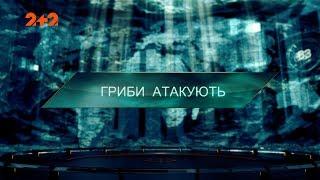Гриби атакують – Загублений світ. 2 сезон. 120 випуск