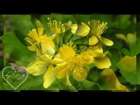 Как убрать веснушки с лица лимоном