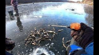 Ловля ротана по первому льду андреевка