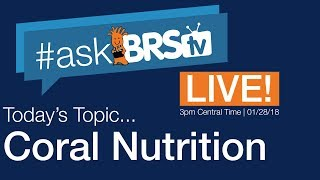 Do you feed your corals? - #AskBRStv Live