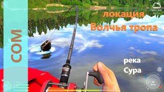 Рыбалка на суре за сомом