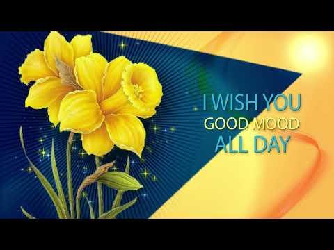 🌼Good morning🌼I wish you good mood all day