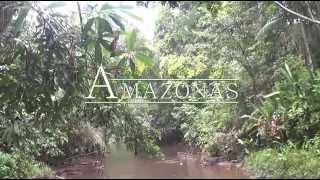 Удивительная амазонка: Южная  Америка Д/Ф 2012