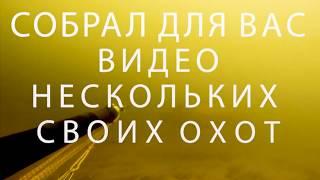 Анонс фильма про подводную охоту на Волге. Премьера 15 ноября в 20:00
