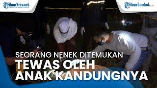 Seorang Nenek di Lombok Ditemukan Tewas oleh Anak Kandung, Awalnya Diketahui Pergi ke Sawah