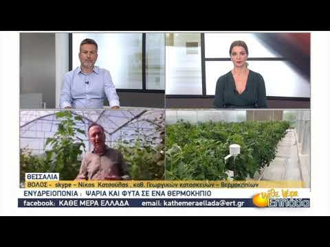 Ενυδρειοπονία: Ψάρια και φυτά σε ένα θερμοκήπιο | 24/09/2020 | ΕΡΤ