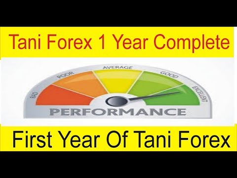 Tani Forex 1 Year Complete One Year Progress Review In Urdu And