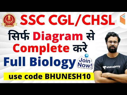 """SSC CGL / CHSL 2019-20 