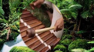 "ANDY WASSERMAN'S ""World Music Experience"" - West African Balafon"