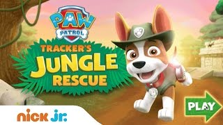 Play PAW Patrol 'Tracker's Jungle Rescue' for Free | Games | Nick Jr.