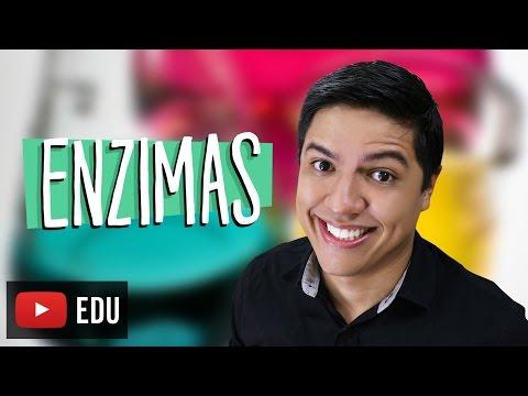 ENZIMAS - BIOQUÍMICA - Biologia com o Prof. Kennedy Ramos