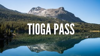 Driving Over Tioga Pass: Best Stops on Tioga Road in Yosemite National Park