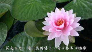 念佛的緣由 念佛法門的起緣(觀成法師之廣結善緣2201—2202)