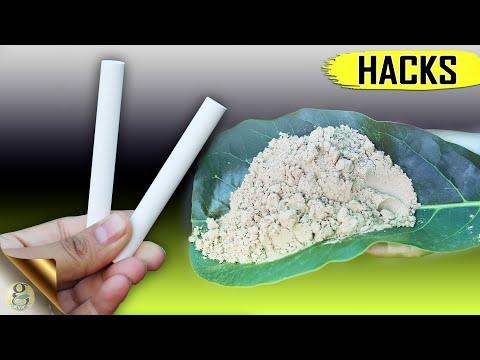 2 TOP SECRET GARDENING HACKS FOR CALCIUM + 6 Easy Organic Sources of Calcium to Plants