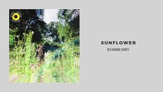 Rex Orange County   Sunflower (1 Hour Loop)x