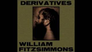 William Fitzsimmons  So This Is Goodbye Pink Ganter