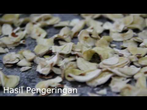 Video PRODIKNAS Pemanfaatan Limbah Biji Durian Sebagai Bahan Olahan Pangan Bergizi