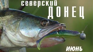Северский донец ростовская область рыбалка
