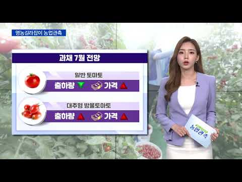 [영농길라잡이 농업관측] 과일, 과채 7월 관측 이미지