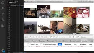 05 Giphy fetch making img tags