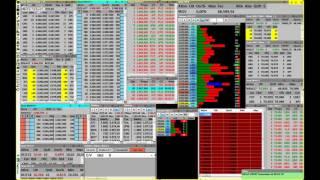 Transmissão - Arena do Investidor