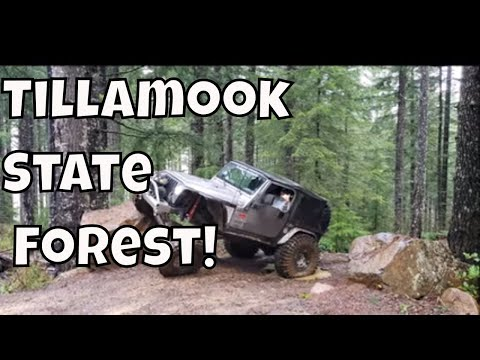 PNW Jeep Vlog In The TSF With Linda's Pantry